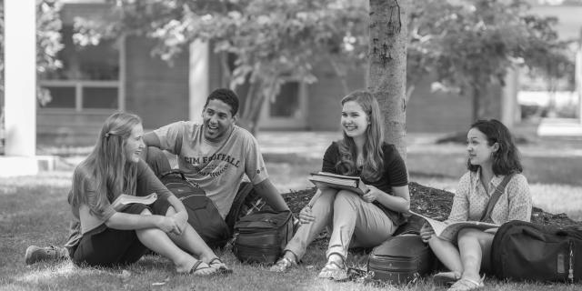 Students sitting under tree