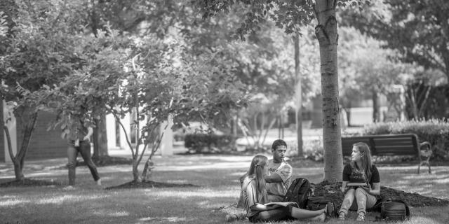 students on green